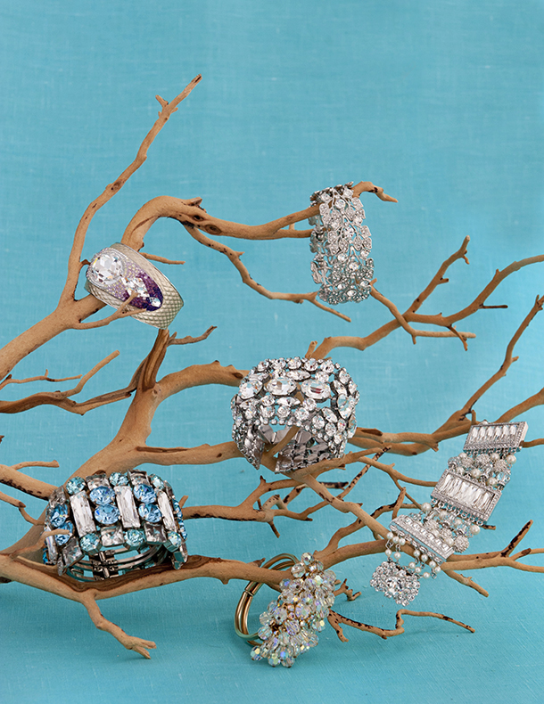 Rings and bracelets displayed on branch